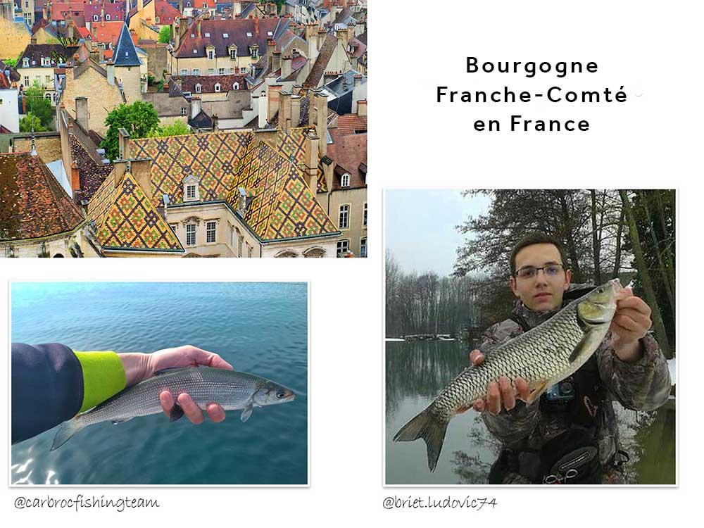 La Bourgogne Franche-Comté en France