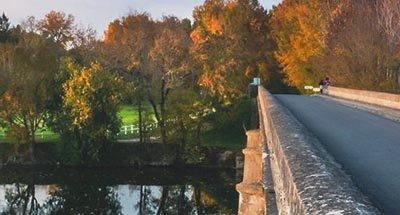 Pont et feuilles d'automne