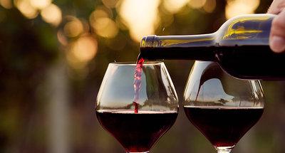 Fantastische wijn in Bourgondië