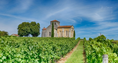 Historische kapel in de wijngaarden van Cognac