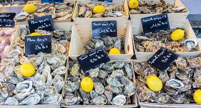 Verse oesters in Bretagne