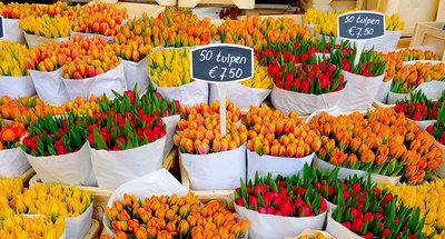 Tulpen op de markt in Amsterdam