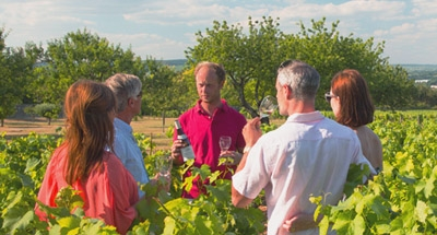 Wijnproeven in Bourgondië