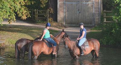 Paarden in de rivier de Theems