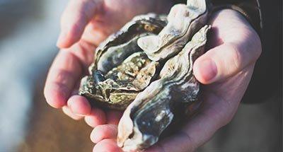 Homme avec des huîtres à la main