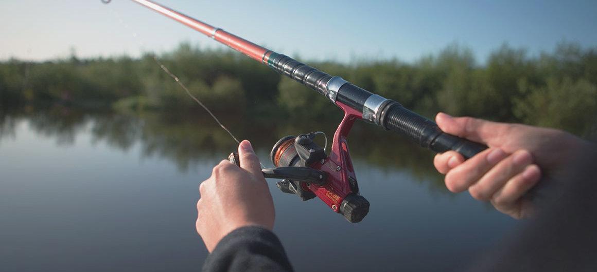 Pêche sur la rivière Shannon