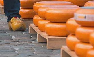 Goudas sur un étale d'un marché au fromage